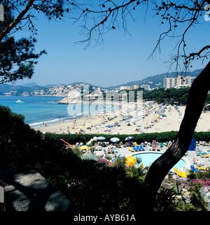 Holidays Paguera Majorca On The Beach