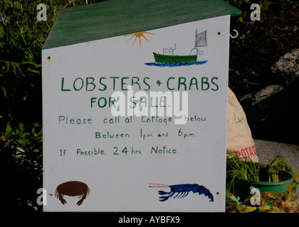 Hand painted sign offering crabs and lobsters for sale Bryher Isles of Scilly UK 17 September 2006 - Stock Photo