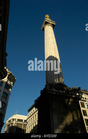 The Monument commemorating the Great Fire of London viewed from the base City of London - Stock Photo