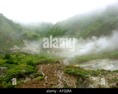 The Valley of Desolation a moss covered volcanic landscape of steaming hot springs boiling mud sulphoric rock and - Stock Photo