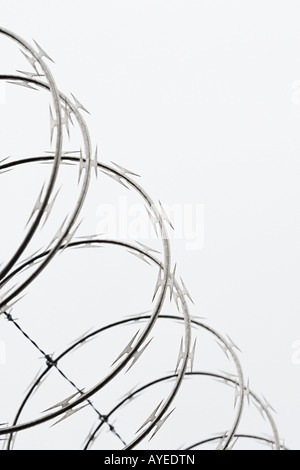 Razor wire - Stock Photo