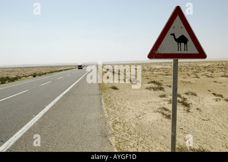 Sign warning of a camel crossing in the desert of northern Kuwait near the Iraq border - Stock Photo