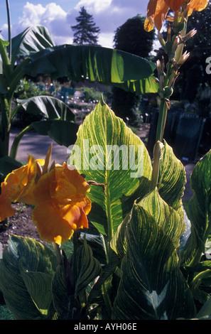 Jardin des Plantes Botanic Garden Nantes Pays de la Loire Loire Atlantique France - Stock Photo