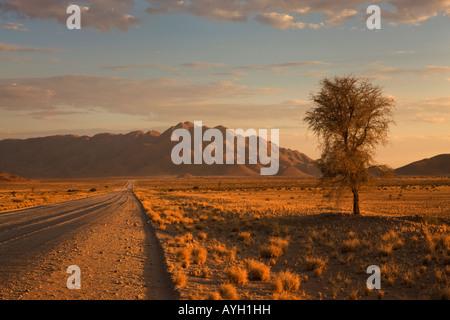 Road and mountains, Namib Desert, Namibia, Africa - Stock Photo