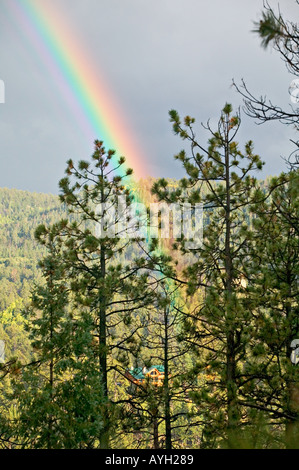 A rainbow falls across a luxury cabin in a forest - Stock Photo