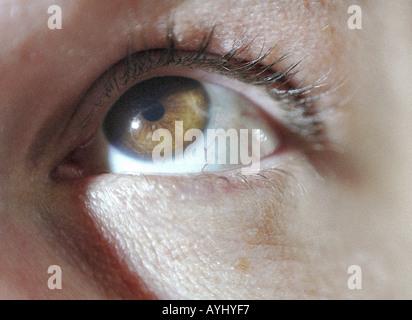 Auge mit brauner Pupille schaut nach oben - Stock Photo
