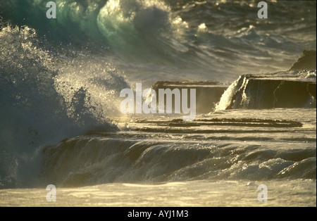 Waves of the Pacific Ocean beating on the north coast of Tongatapu the main island of Tonga - Stock Photo