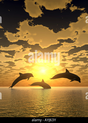 Three dolphins floating at ocean control light - Stock Photo