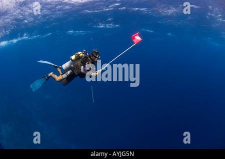 Divers in shallow clear water Layang Layang atoll Sabah Malaysia South China Sea Pacific Ocean - Stock Photo