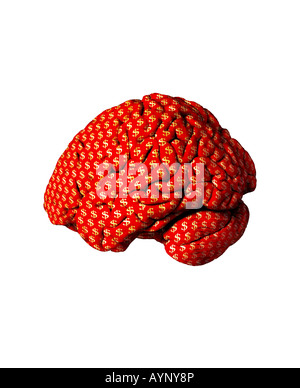 Dollar $ Brain American USA Money cut out outline - Stock Photo