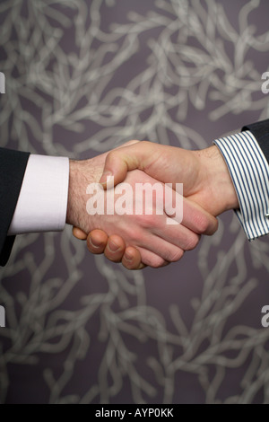 Two businessmen shaking each others hands, close-up - Stock Photo