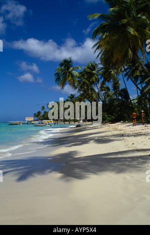 WEST INDIES Caribbean Tobago Pigeon Point View along sandy coconut palm tree lined beach with tourists. - Stock Photo