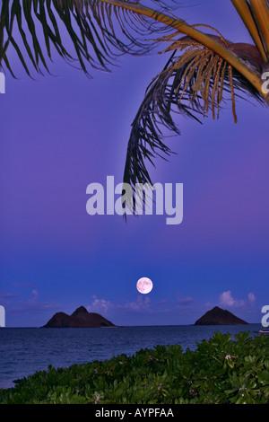 full moon rising between mokulua islands - Stock Photo