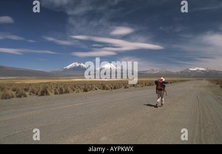 Trekker, Payachatas volcanoes in background, Cordillera Occidental, Sajama National Park, Bolivia - Stock Photo
