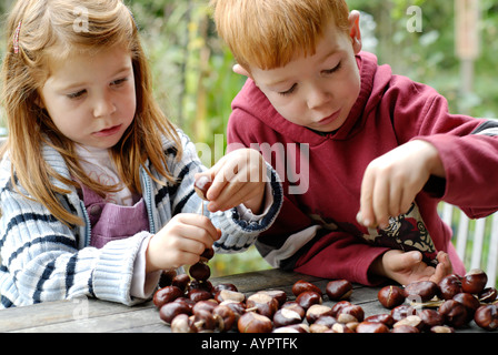 Children making crafts out of chestnuts in autumn - Stock Photo
