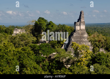 Mayan ruins of Tikal - view from Temple III to Temple I, Temple of the Giant Jaguar, Yucatan, Guatemala, Central - Stock Photo