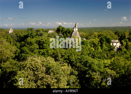 Mayan ruins of Tikal - View from Temple III to Temple I, Temple of the Giant Jaguar, and II, Yucatan, Guatemala, - Stock Photo