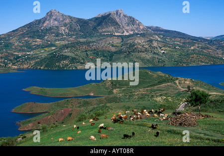 Embalse de Zahara, reservoir in the Sierra de Grazalema, Cádiz Province, Andalusia, Spain - Stock Photo