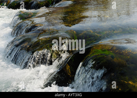 Fast-flowing mountain stream rushing over algae-covered rocks near Fischbachau, Bavaria, Germany - Stock Photo