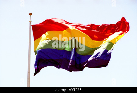 Rainbow Flag on flagpole blowing in the wind - Stock Photo