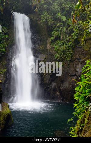 Templo waterfall in rainforest at La Paz Waterfall Gardens Costa Rica - Stock Photo