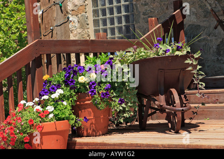 red, white and blue flowers growing in old antique metal wheelbarrow, and clay pots, on wooden porch, and stairs - Stock Photo