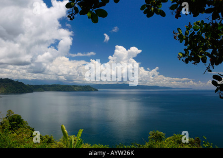 Blue calm water of isolated Golfo Dulce at Osa Peninsula Costa Rica under a Cashew tree - Stock Photo