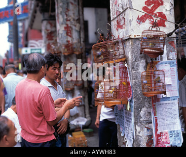 HK-Hong Kong, Kowloon, Bird Market - Stock Photo