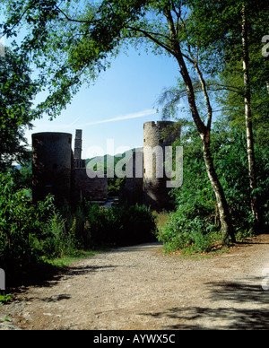 Burgruine Hardenstein im Muttental in Witten, Ruhrgebiet, Nordrhein-Westfalen - Stock Photo