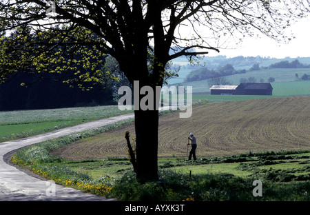 FARMING AGRICULTURE MAN WORK GERMANY DREILANDERECK DDR - Stock Photo