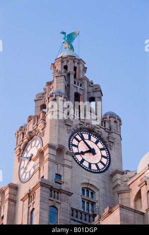 Royal Liver building in Liverpool, England, UK. - Stock Photo