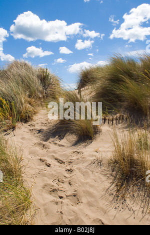 Sand dunes and beautiful clouds over a beach in southern France - Stock Photo