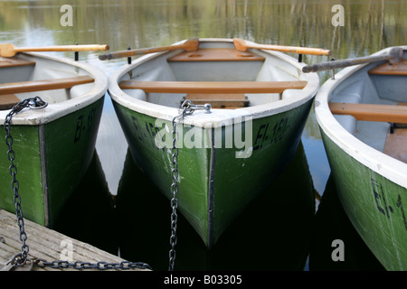 Green rowing boats / Grüne Ruderboote - Stock Photo