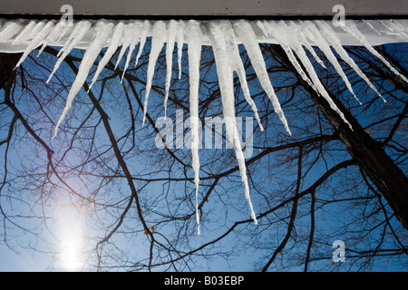 Soffit Icicles Twisted Branches Spring Icicles hang down from the edge of a house backlit by a bright sun - Stock Photo