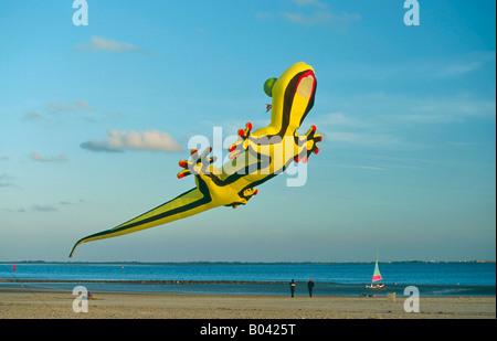 Kite Festival, Island Norderney, north frisian island schleswig holstein, Germany - Stock Photo