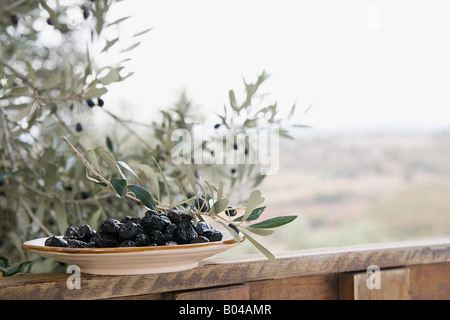 Black olives on a dish - Stock Photo