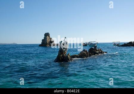 Pelicans on a rock near Los Arckos Cabo San Lucus - Stock Photo