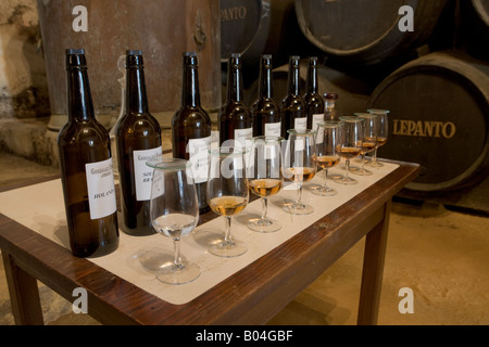 Bottles and glasses on display in the Bodega of Brandies at Gonzalez Byass, town of Jerez de la Frontera, Costa - Stock Photo
