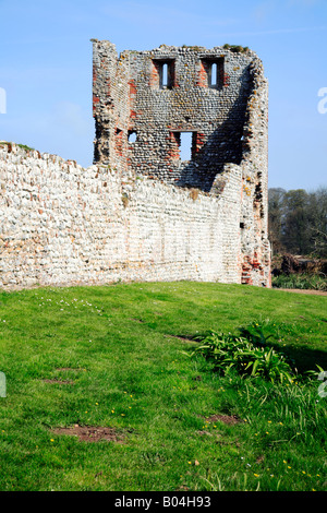 Curtain Wall and Ruined Tower on North-East Corner of Baconsthorpe Castle, near Holt, Norfolk, UK. - Stock Photo