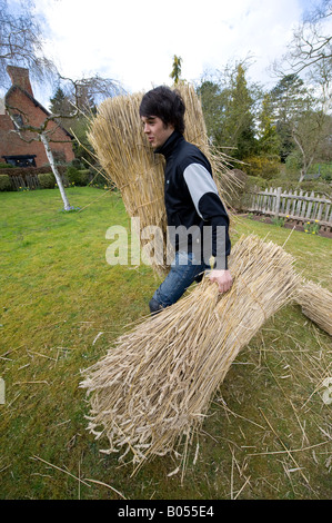Apprentice Thatcher Jonty Jackson lifts bundles of thatching straw to repair the roof of Anne Hathaway's Cottage - Stock Photo