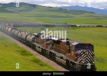 Train on a railroad track, Canadian National Railway, Alberta, Canada