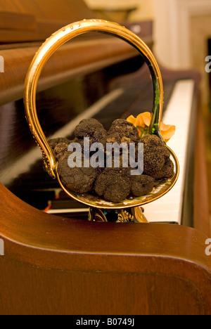 Closeup Showing Bucket of Fresh Black Diamond Truffles on Plate on Piano USA - Stock Photo