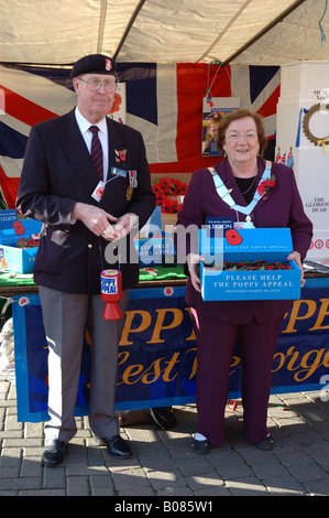 Poppy Appeal, Melton Mowbray, Leicestershire, England, UK - Stock Photo