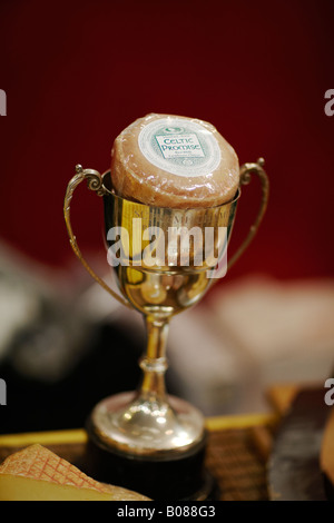 A trophy, awarded for fine quality cheese. - Stock Photo
