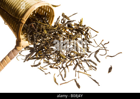 An overflowing heap of raw tea spilling out of a woven scooper. - Stock Photo