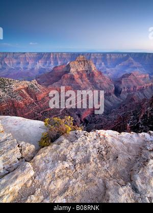 Cape Royal, North Rim, Grand Canyon National Park, Arizona, USA - Stock Photo