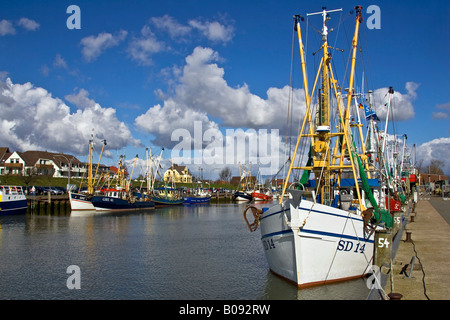 Fishing cutters in the harbour of the North Sea resort town of Buesum, Dithmarschen, Schleswig-Holstein, Wattenmeer, - Stock Photo