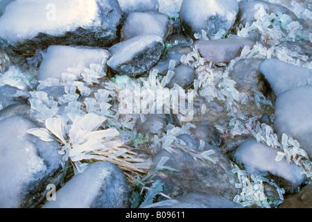 Ice crystal formation on stones, Tyrol, Austria - Stock Photo