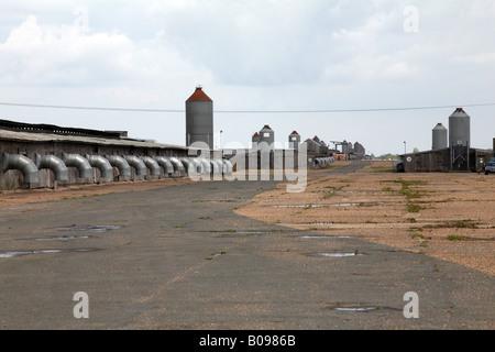General View of Bernard Matthews turkey farm built on the former wartime runways of RAF Halesworth in Suffolk - Stock Photo