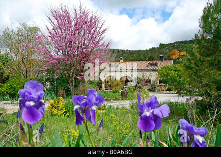 A house in the country. Lleida. Catalonia province. Spain Europe - Stock Photo
